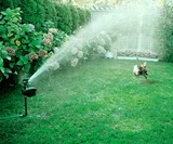 Pest-Deterring Motion-Activated Sprinkler