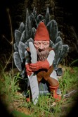Game of Gnomes: Throne of a Thousand Shovels