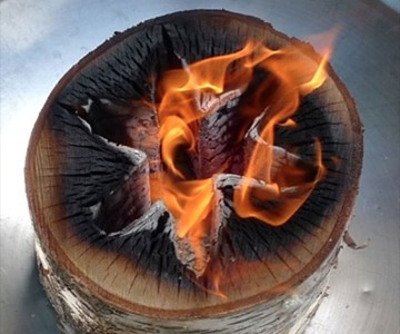 Light 'n Go Bonfire Log