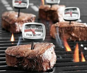 Steak Button Thermometer