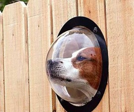Pet Peek Dog Window