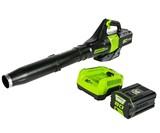 GreenWorks 145MPH Cordless Leaf Blower