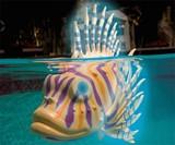 Swimming Pool Fish Bots