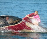 Woman Riding Fin of Seabreacher Shark X Submarine