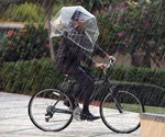 Head Dome Umbrella