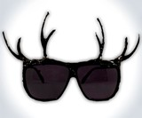 Antler Sunglasses