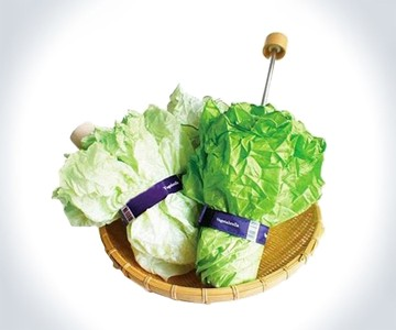 Vegetabrella Lettuce Umbrella