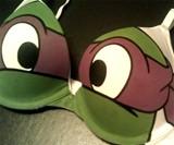Ninja Turtles Bra
