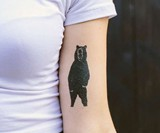 Tattly Designer Temporary Tattoos