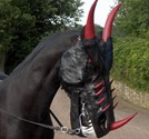 Custom Leather Dragon Mask for Horses