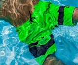 NONETZ Men's Anti-Chafe Swim Trunks