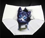 Show Me Your Kitty Panties