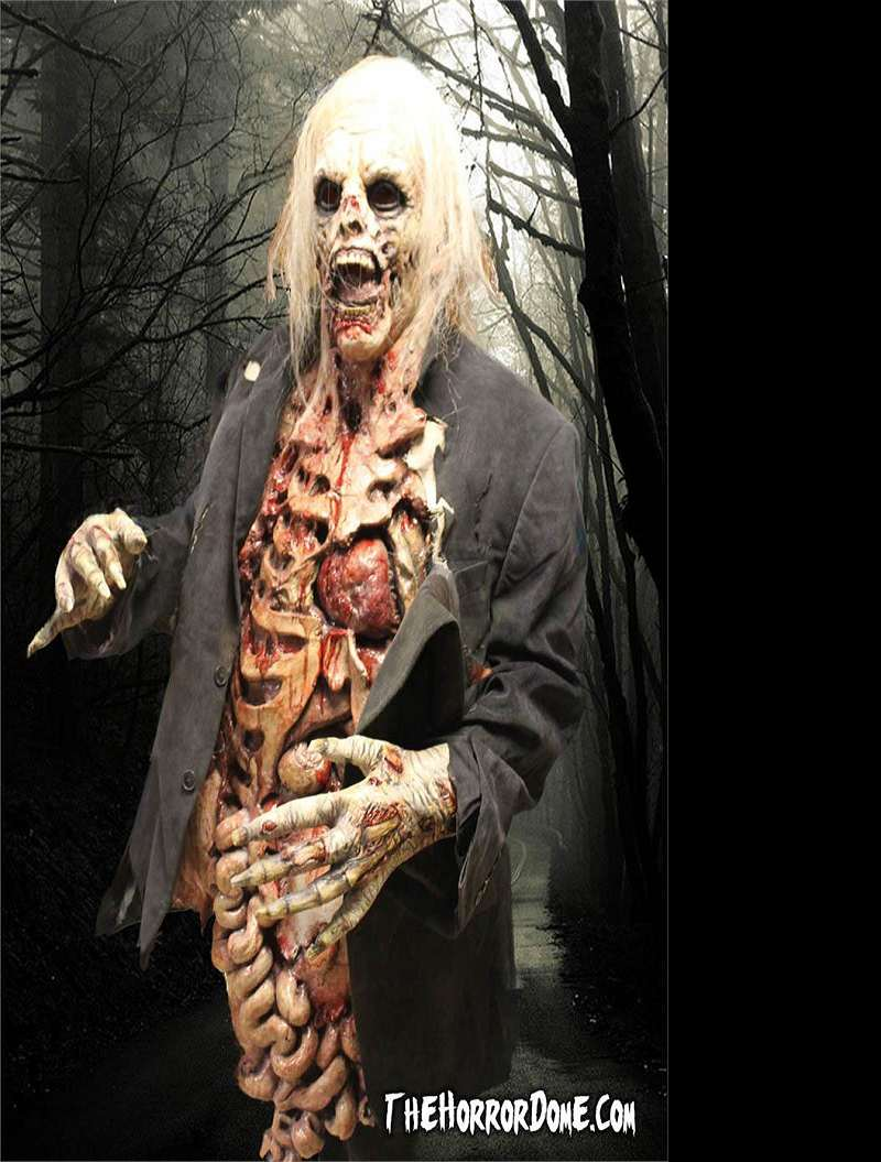 Movie Quality Zombie Costume | DudeIWantThat.com