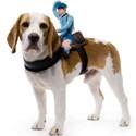 Mailman Dog Rider Costume