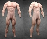 Muscle Suits