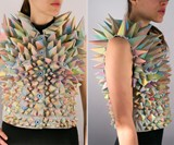 Stegosaurus Vest - Front & Side Views