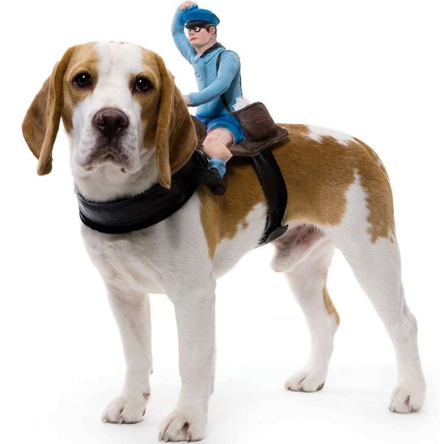 Mailman Dog Rider Costume