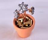 Bullet Bouquets