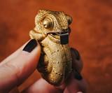 Chameleon Tape Measure