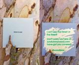 Scratch My Wood Custom Scratch-Off Cards