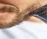 Philips Norelco Vaccuum Beard Trimmer