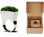 Grass Ring Packaging