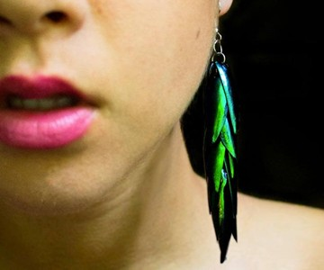 Beetle Wing Jewelry