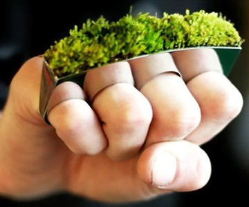 Grass Knuckles - Living Jewelry