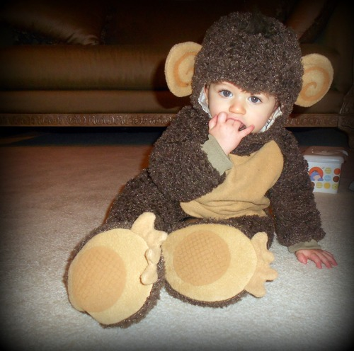 Infant Monkey Costume - DudeIWantThat.com